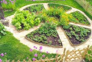 вопрос, как сделать огород, уже не будет казаться вам таким сложным