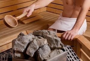 Камни для бани какие лучше?